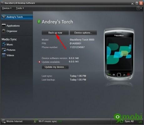 huong dan chuyen danh ba tu Blackberry sang iPhone