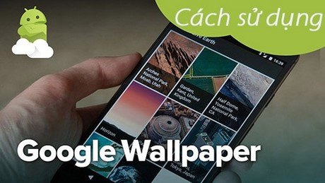 su dung google wallpapaer tren android