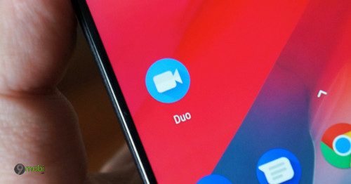 google duo co kha nang chia se man hinh android