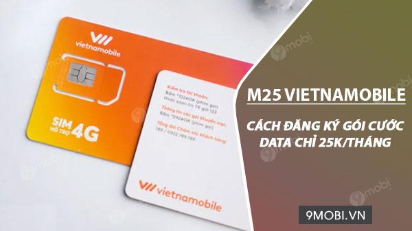 cach dang ky goi m25 vietnamobile 25k thang