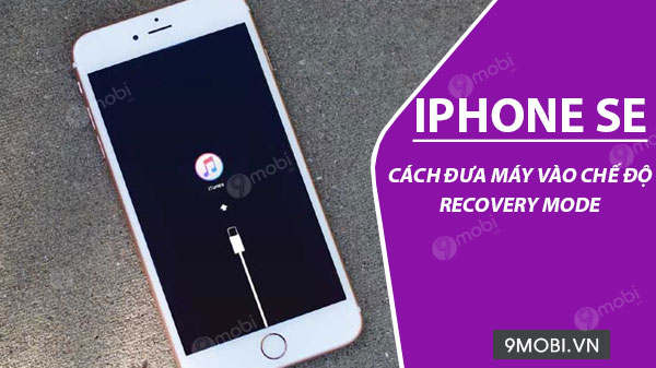 cach dua iphone se vao che do recovery mode