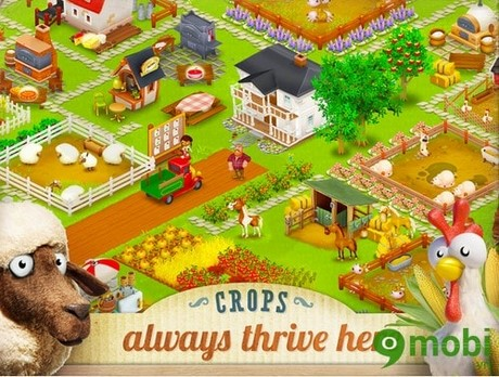 tai game Hay Day cho Android
